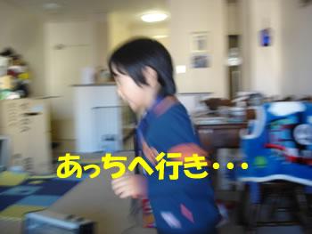 e0067628_875356.jpg