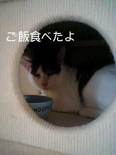 e0017831_085961.jpg