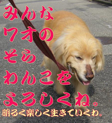 c0085188_021430.jpg