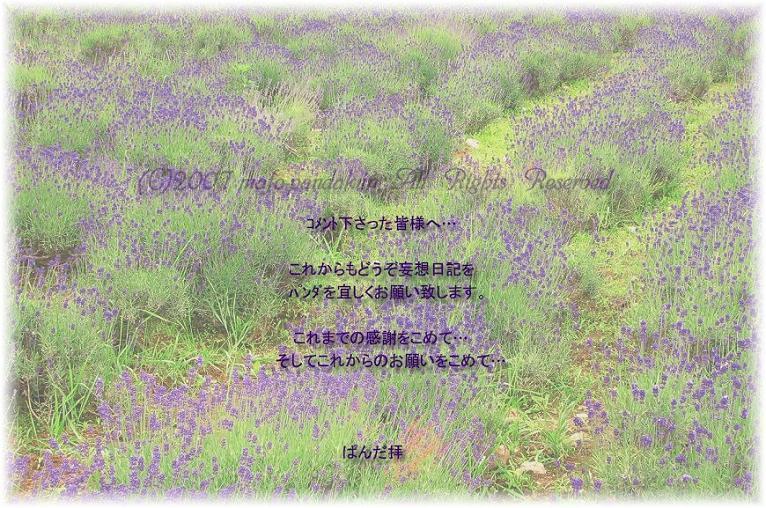 c0080667_2101635.jpg