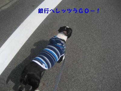 c0092787_10184636.jpg