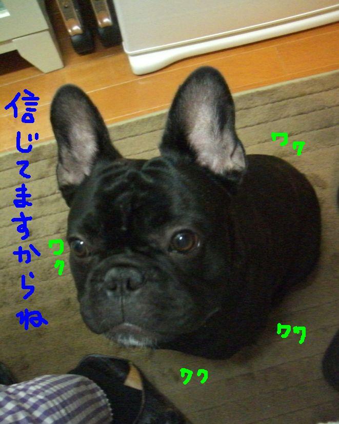 c0113109_0541725.jpg