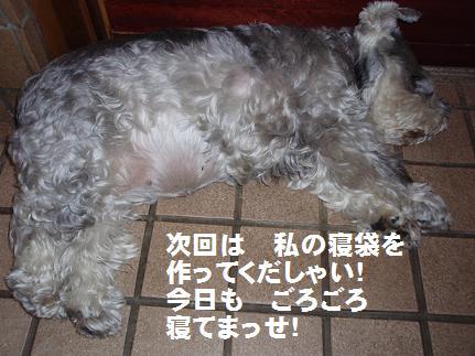 c0098501_17244064.jpg