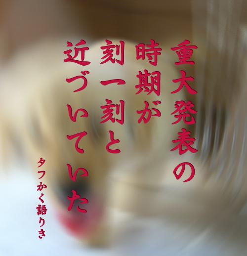 c0085188_2059098.jpg
