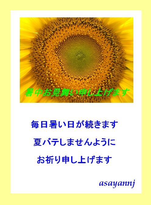e0085772_16153100.jpg