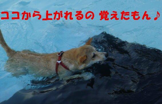 a0089865_2362169.jpg