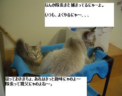 c0132537_2475730.jpg