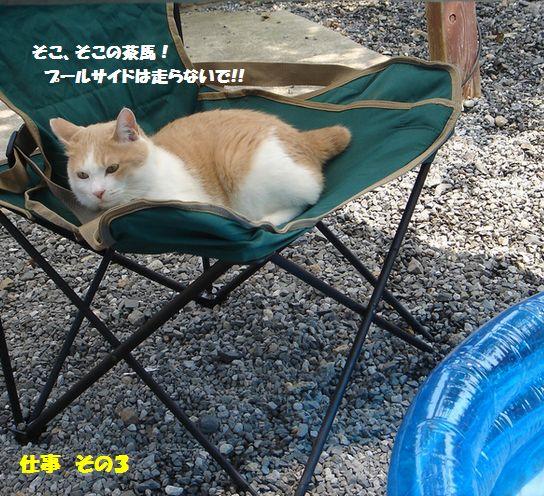 c0059331_20433336.jpg