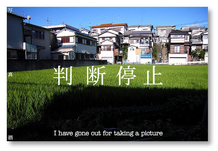 c0102003_17265972.jpg