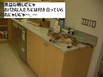 c0132537_12505759.jpg