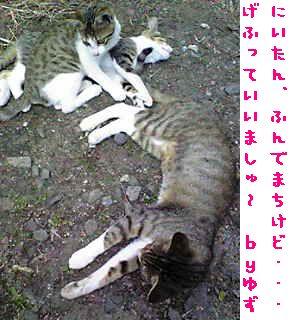 c0103205_21374837.jpg