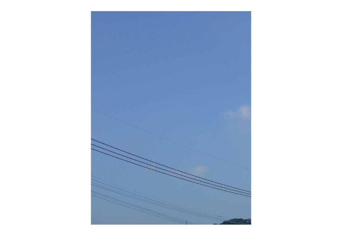 a0060899_10253683.jpg
