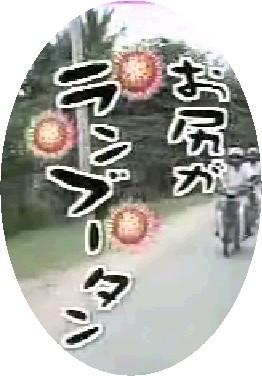 c0006667_3345749.jpg