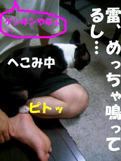 c0092097_9151032.jpg