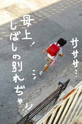 a0081837_15583453.jpg