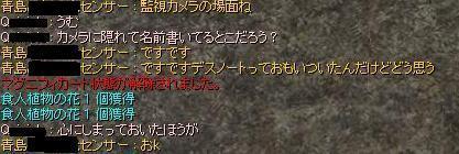 e0032752_1753859.jpg