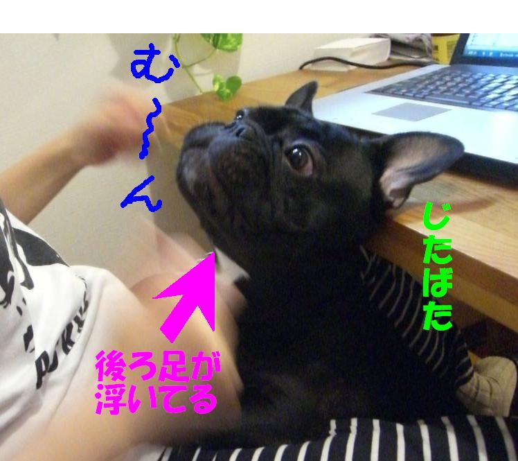 c0113109_23132117.jpg