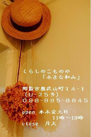 a0081837_15305977.jpg