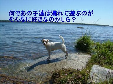 e0079166_21232362.jpg