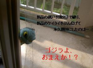 a0048531_9123245.jpg
