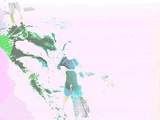 c0045628_16493856.jpg