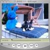c0132537_10472619.jpg