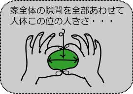 a0098510_14101889.jpg