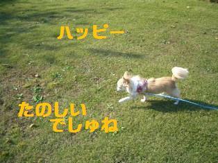 c0132205_1803089.jpg