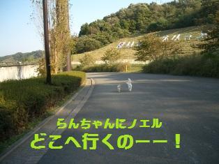 c0132205_1873962.jpg