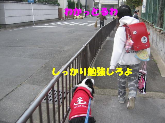 e0117976_1504514.jpg