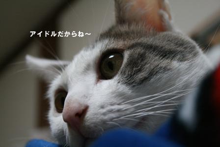 a0093825_1074360.jpg