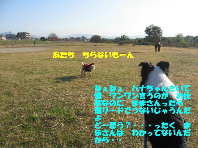 e0117976_12505296.jpg