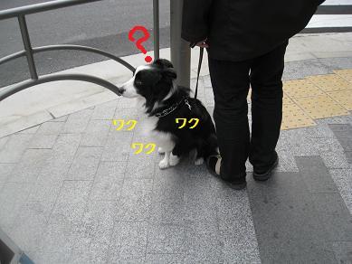 c0115178_1924730.jpg