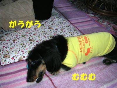 c0151866_10451462.jpg
