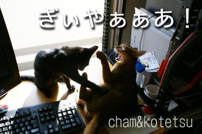 c0132438_2324399.jpg
