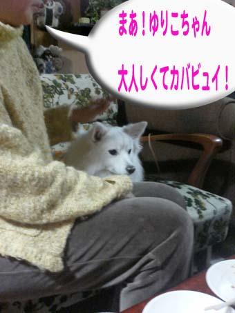 c0105157_1141891.jpg