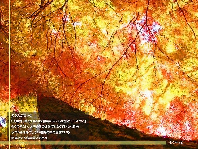 c0112724_20302139.jpg