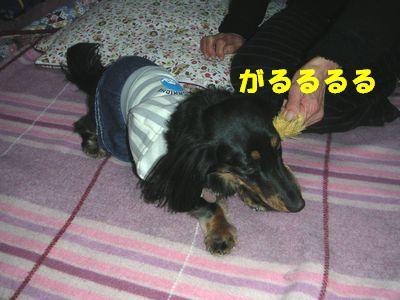 c0151866_8521269.jpg