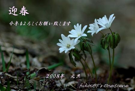 c0027027_23565640.jpg