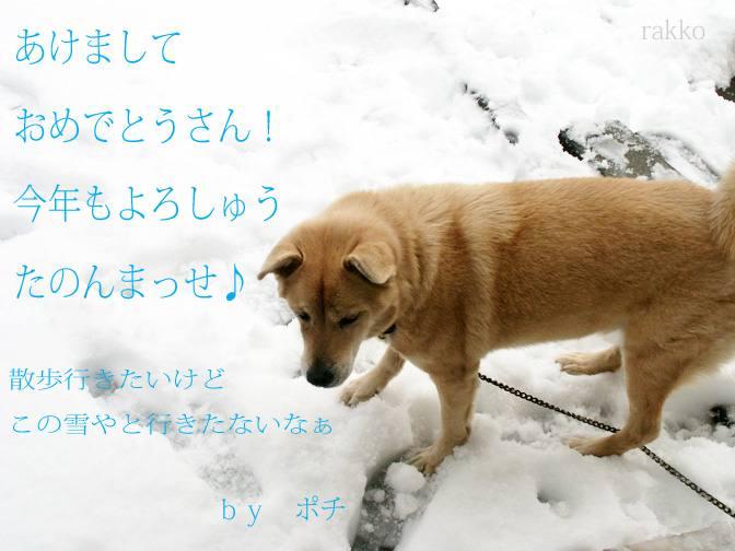 e0097746_011745.jpg