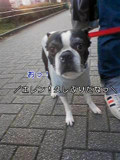 c0110945_0453872.jpg