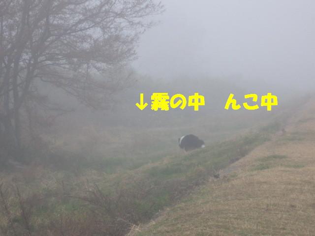 e0117976_135111100.jpg