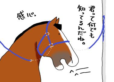 a0093189_5291616.jpg