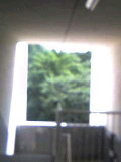 e0069867_1313719.jpg