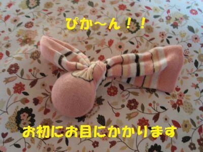 c0151866_2083797.jpg