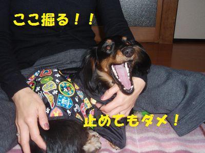 c0151866_22124362.jpg