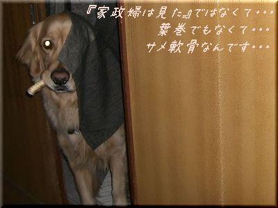 c0107886_2242195.jpg