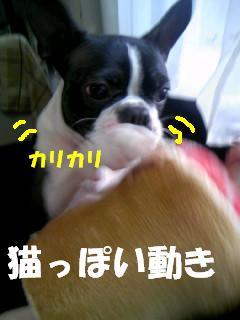 c0092097_13361292.jpg