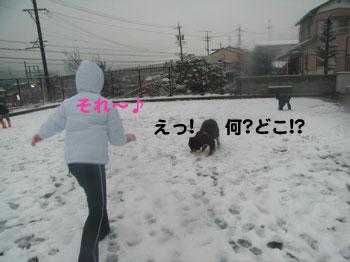 e0124868_22303059.jpg