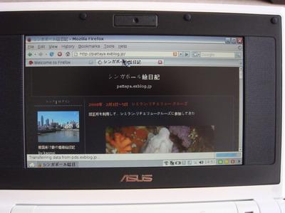 a0002177_16242072.jpg